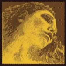 Pirastro Evah Pirazzi Gold  415021 Keman Teli